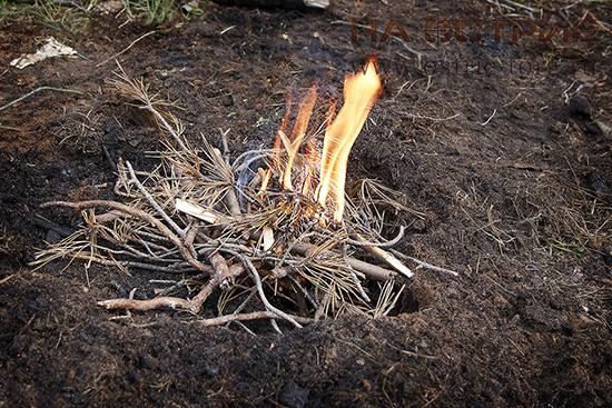 Костер из подножного материала в лесу