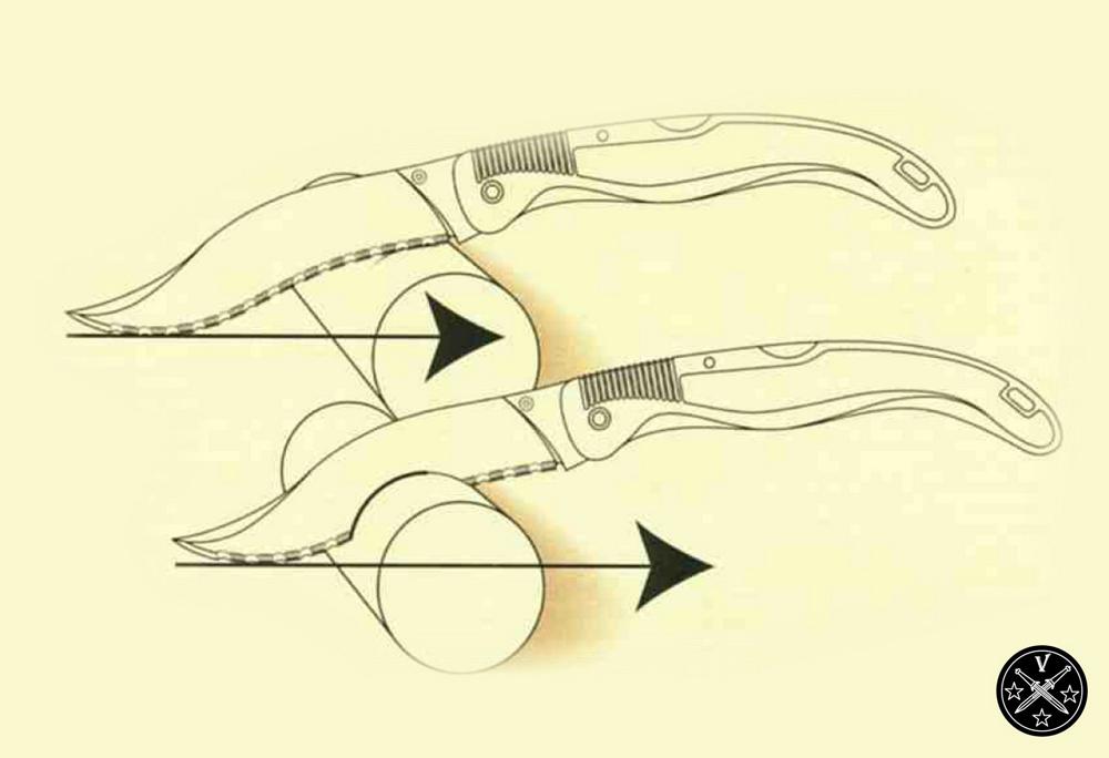 Nogales clip point